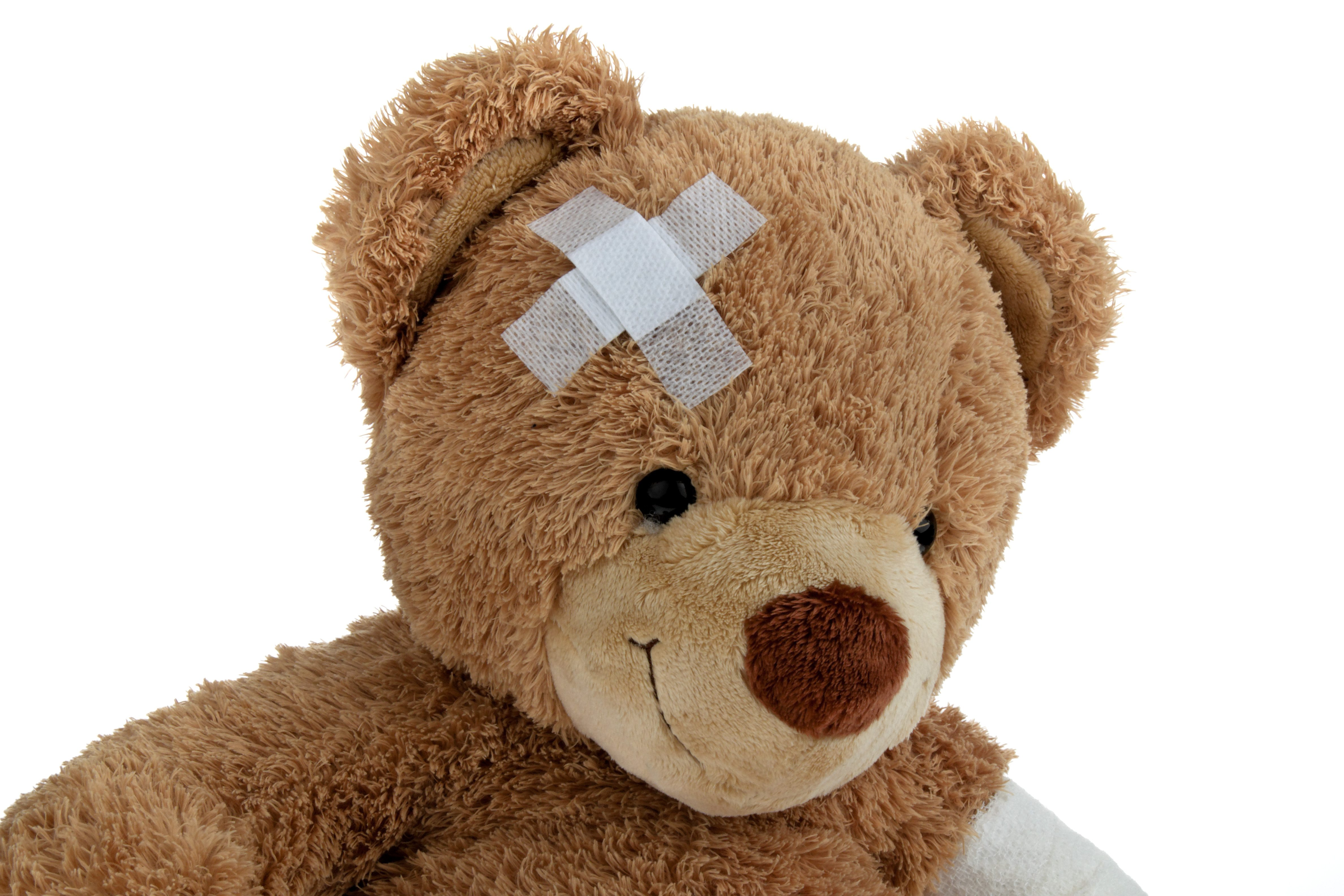 Bear with bandage after an accident